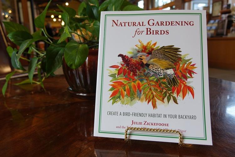 Natural Gardening for Birds